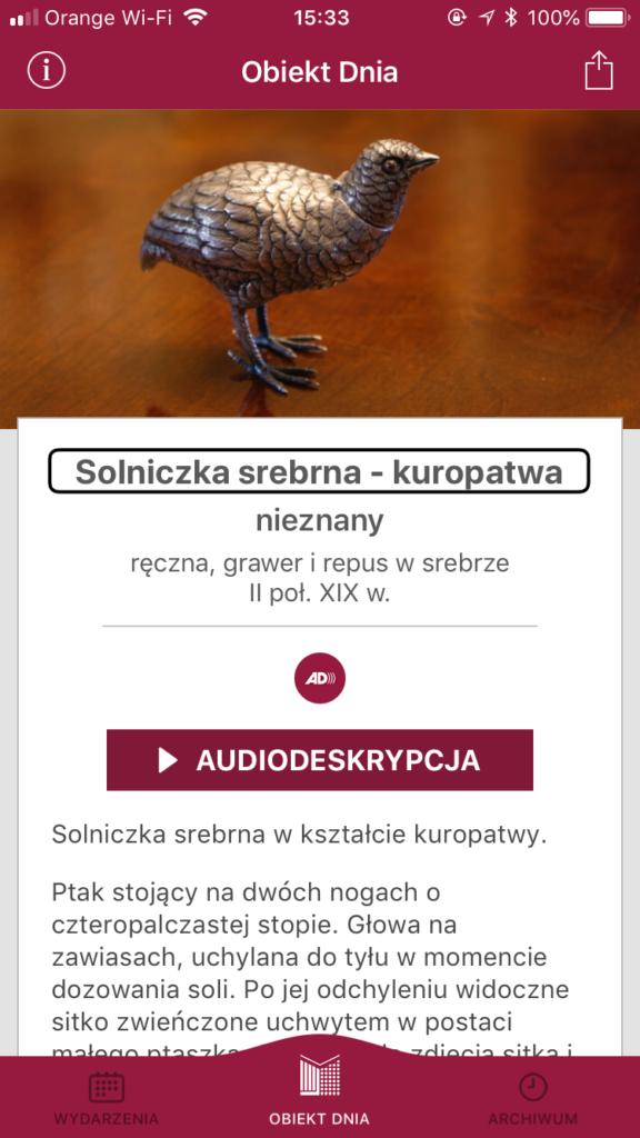 Zrzut ekranu z aplikacji, przedstawiający srebrną solniczkę