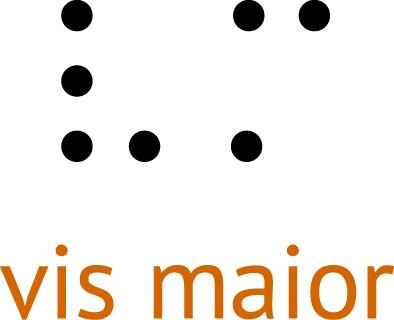 Logo Fundacji Vis Major