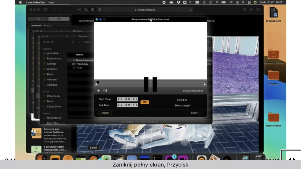 Zrzut ekranu prezentujący okno aplikacji ILove Video Cut