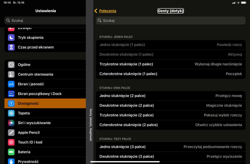 Okno ustawień w systemie iPadOS. Konfiguracja gestów.